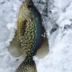 the-greene-outdoors-icefishing-3